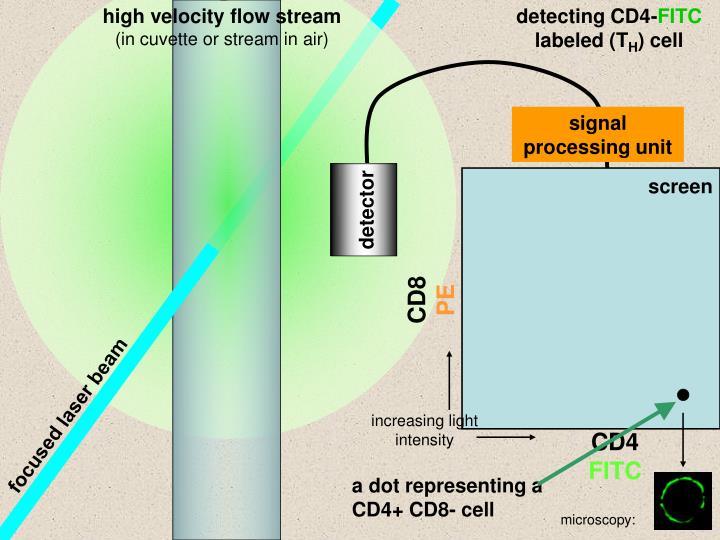 high velocity flow stream