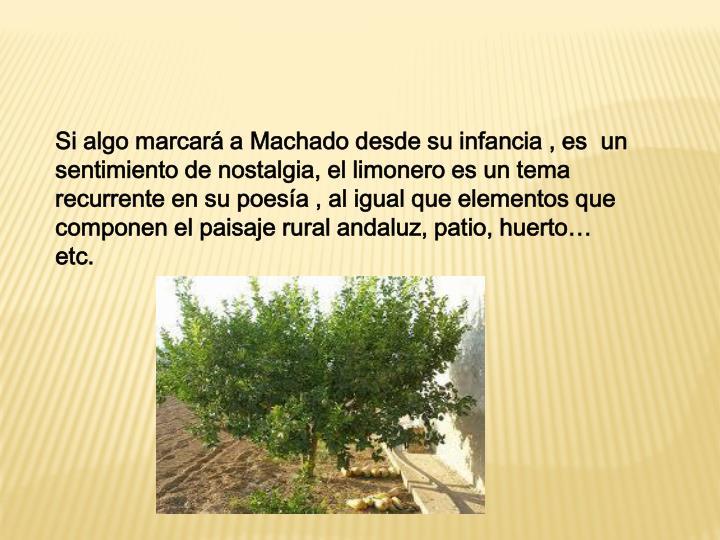 Si algo marcará a Machado desde su infancia , es  un sentimiento de nostalgia, el limonero es un tema recurrente en su poesía , al igual que elementos que componen el paisaje rural andaluz, patio, huerto… etc.