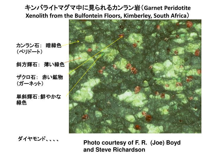 キンバライトマグマ中に見られるカンラン岩(