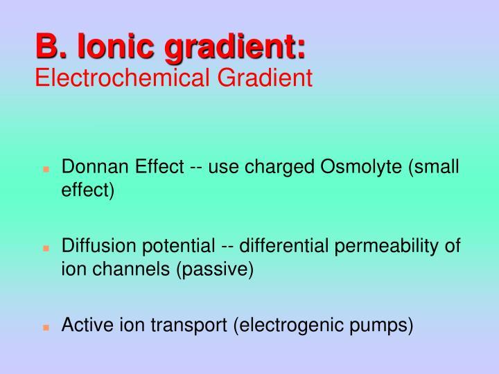 B. Ionic gradient: