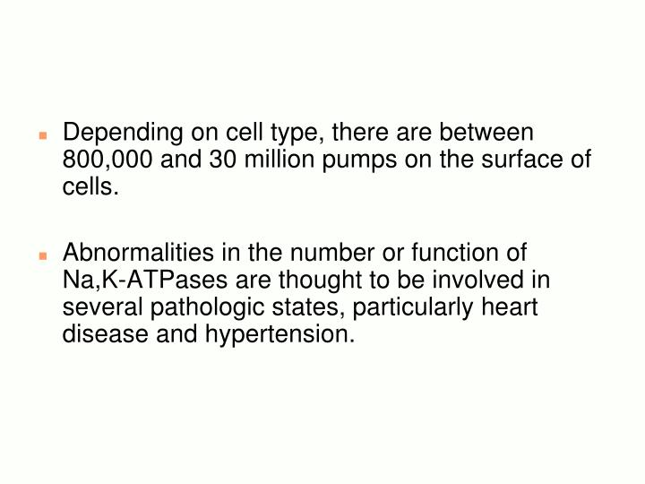 Depending on cell type, there are between 800,000 and 30 million pumps on the surface of cells.