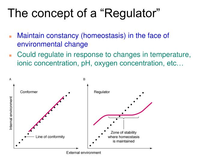 "The concept of a ""Regulator"""