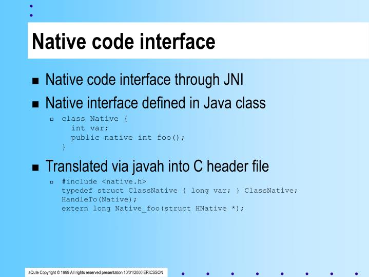 Native code interface