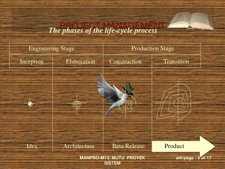 The phases of the life-cycle process