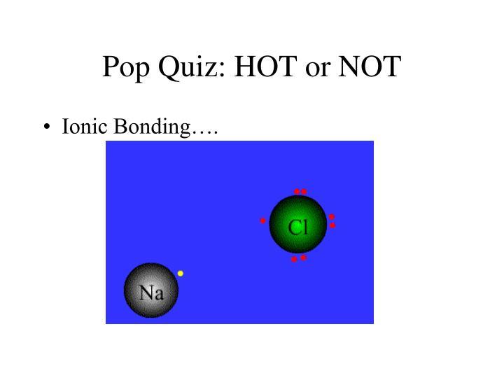 Pop Quiz: HOT or NOT