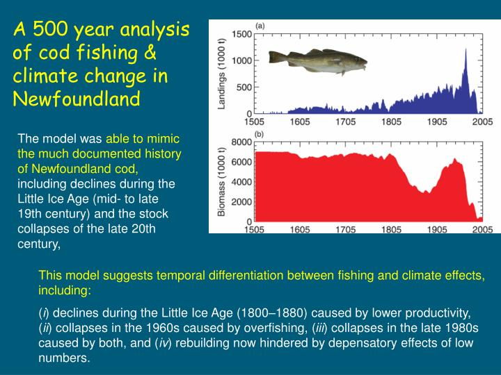 A 500 year analysis of cod fishing & climate change in Newfoundland
