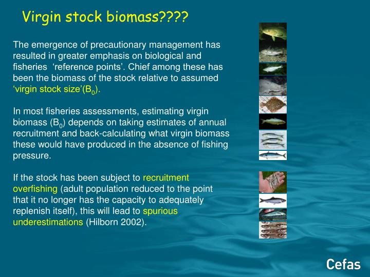 Virgin stock biomass????