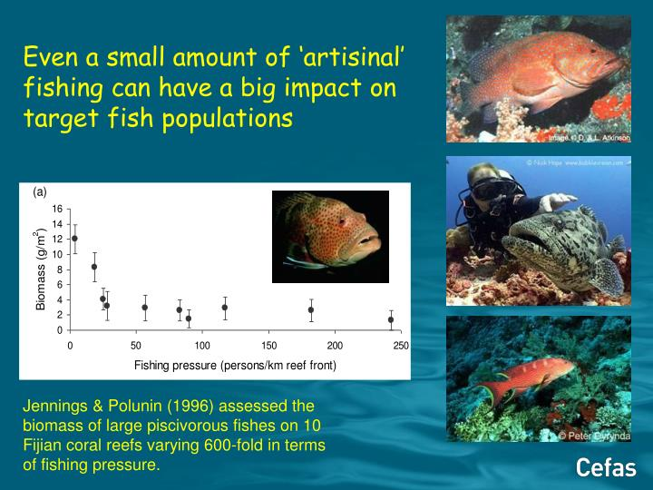 Even a small amount of 'artisinal' fishing can have a big impact on target fish populations