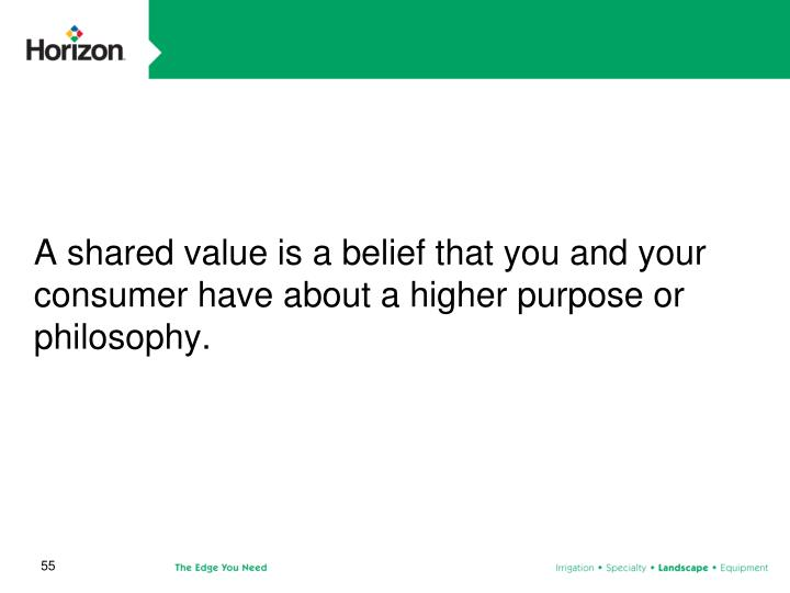 A shared value is a belief that you and your consumer have about a higher purpose or philosophy.