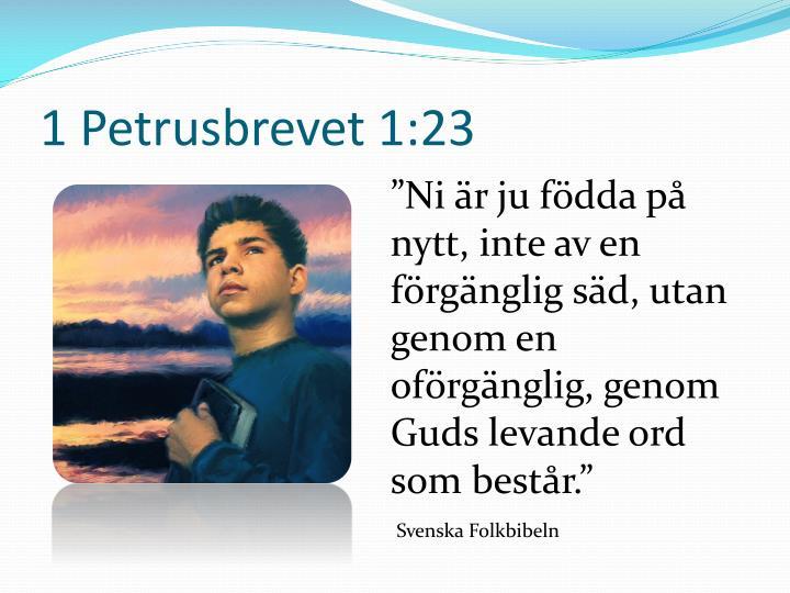 1 Petrusbrevet 1:23