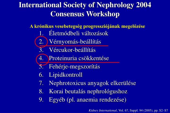 International Society of Nephrology 2004 Consensus Workshop