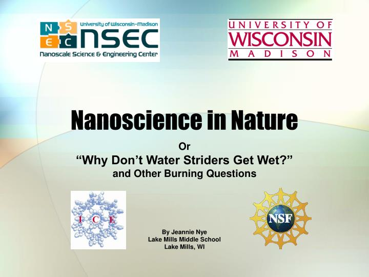 PPT - Nanoscience in Nature PowerPoint Presentation - ID:5972373