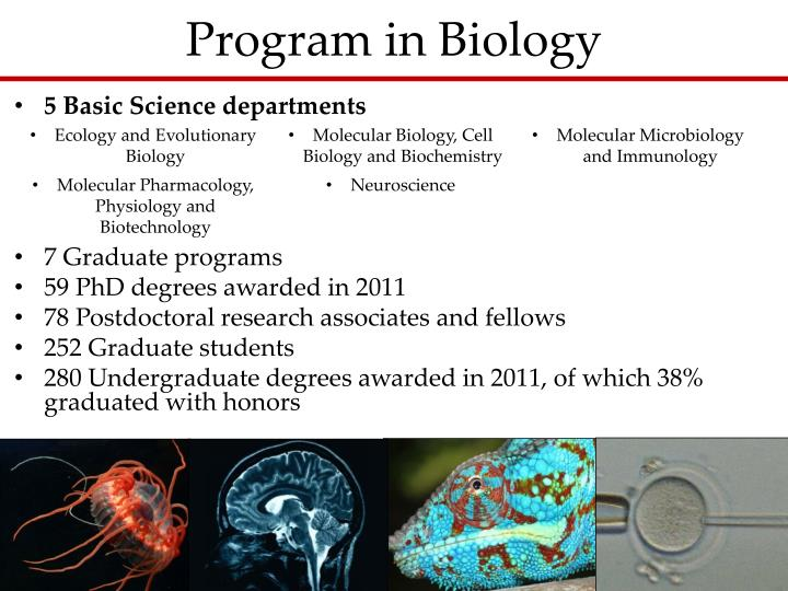 Ppt  The Division Of Medicine And Biological Sciences At. Hair Replacement Orlando Adoption In Nebraska. Case Western Mechanical Engineering. Ready Made Business Cards Lpn Programs In Mo. Best Stock Photo Sites For Photographers. Vegetarian Diet Meal Plan For Weight Loss. Special Education College Post Free Ad In Usa. Accelerated Tax Solutions Songs About Alcohol. Jewelry Design School Online Tds Managed Ip