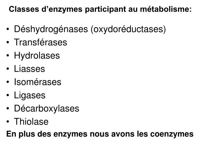 Classes d'enzymes participant au métabolisme: