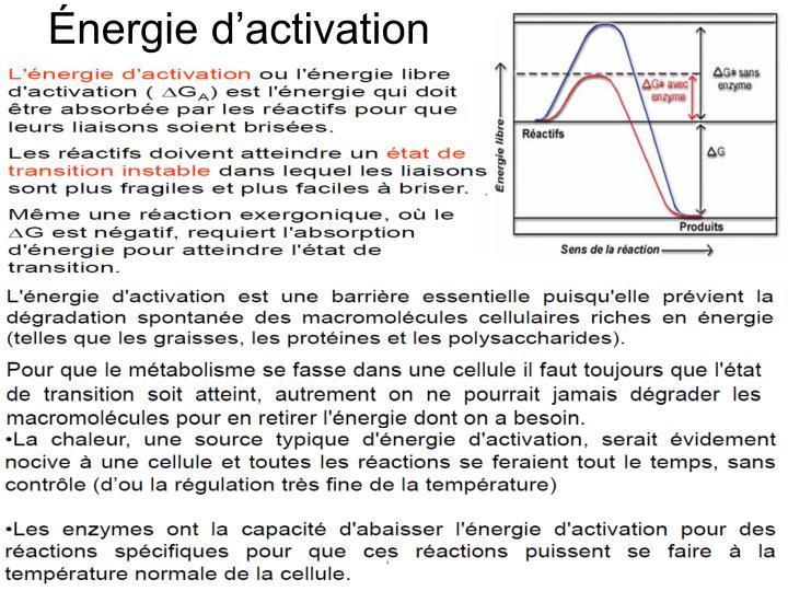 Énergie d'activation