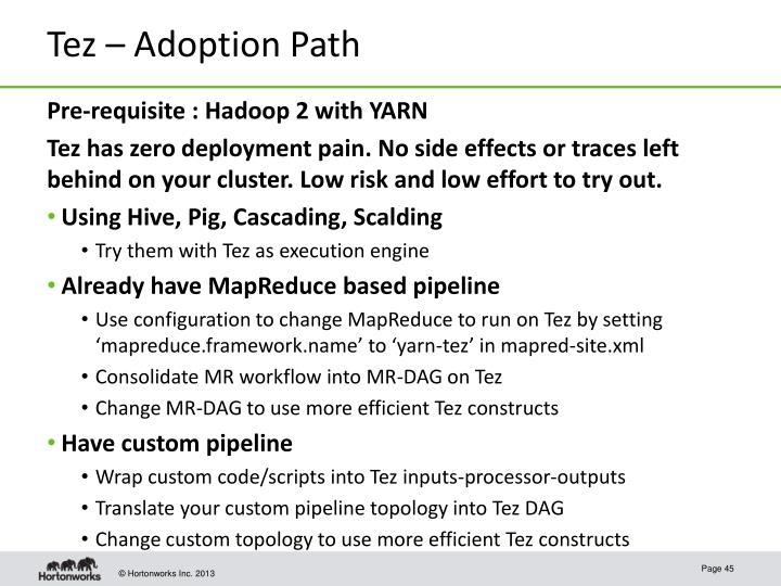 Tez – Adoption Path