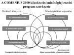 a comenius 2000 k zoktat si min s gfejleszt si program szerkezete