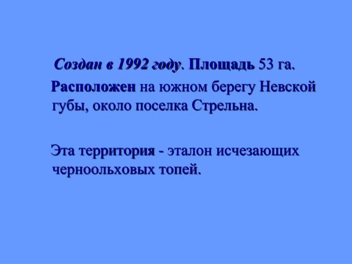 Создан в 1992 году