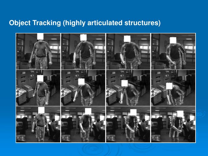 Object Tracking (highly articulated structures)