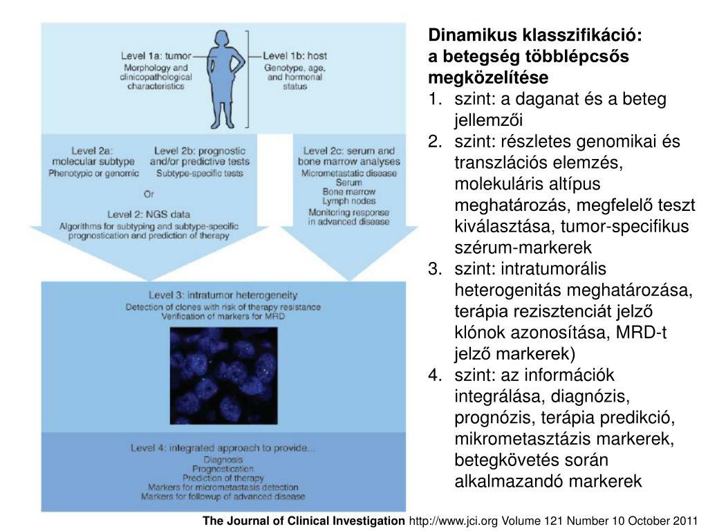 rák intratumor genetikai heterogenitás