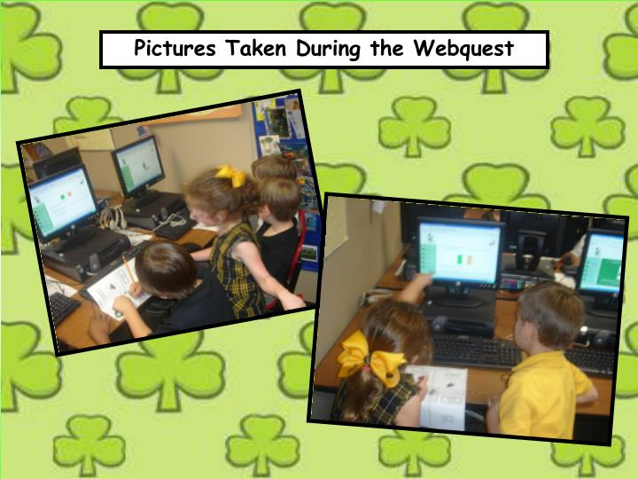 Pictures Taken During the Webquest