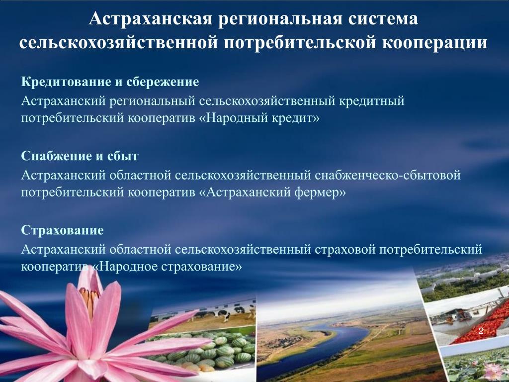 Втб банк калининград кредит