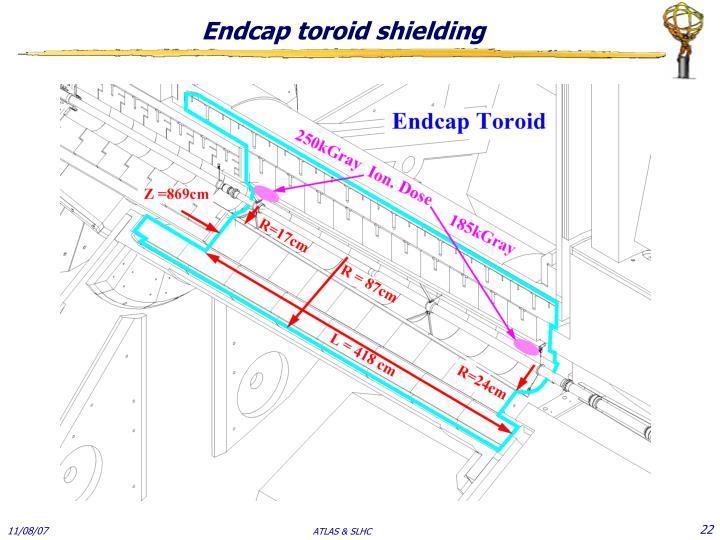 Endcap toroid shielding