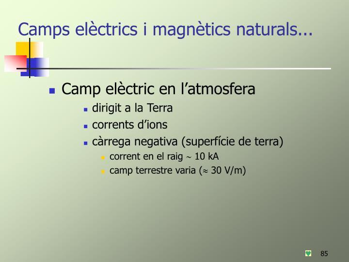 Camps elèctrics i magnètics naturals...