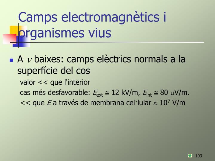 Camps electromagnètics i organismes vius