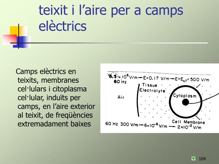 Camps externs i camps de soroll: acoblament del teixit i l'aire per a camps elèctrics