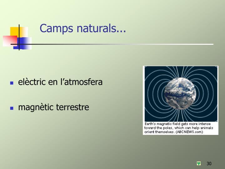Camps naturals...