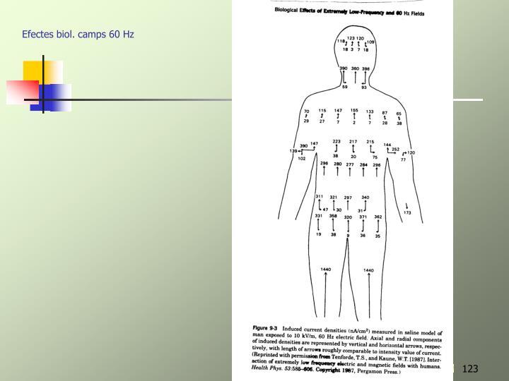 Efectes biol. camps 60 Hz