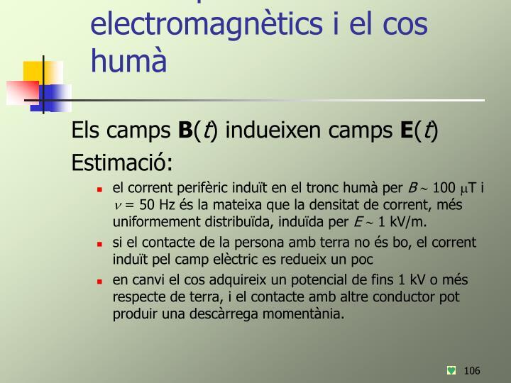 Els camps electromagnètics i el cos humà