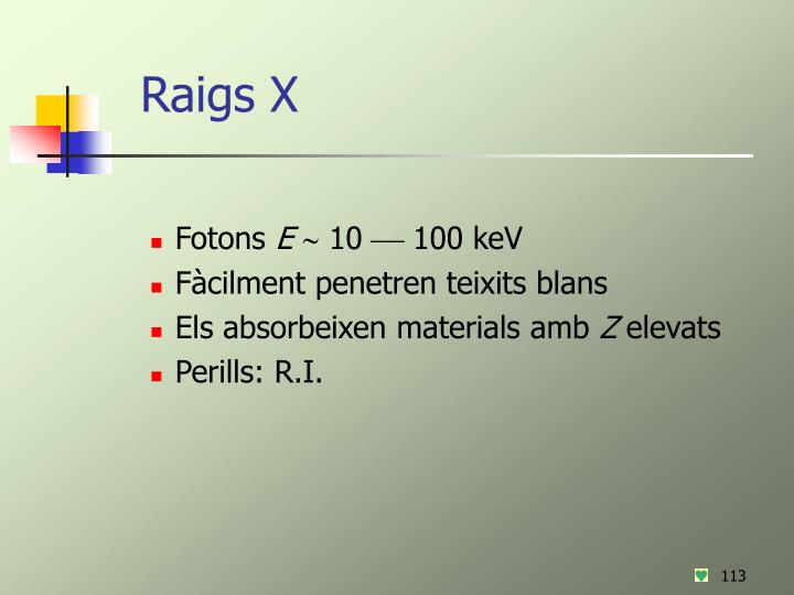 Raigs X