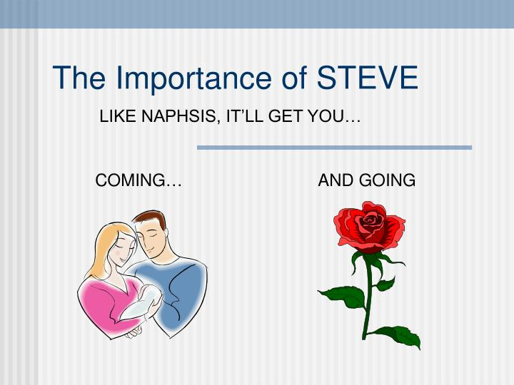 the importance of steve