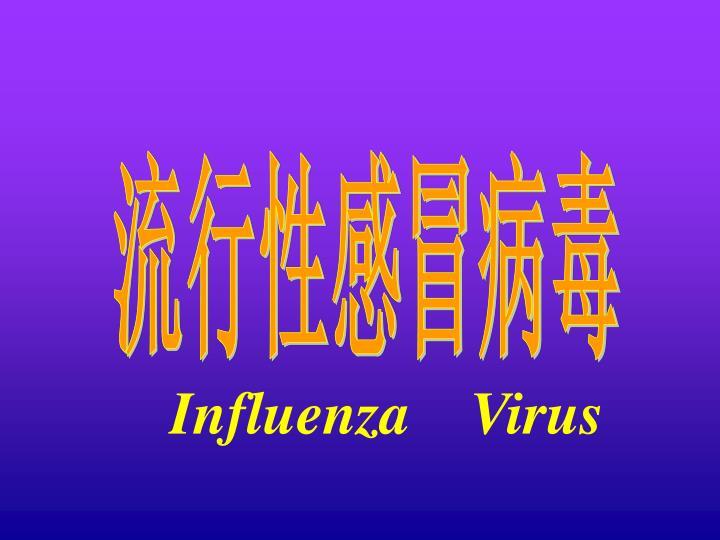 流行性感冒病毒
