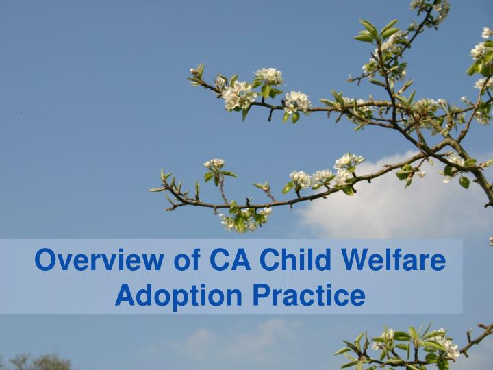 overview of ca child welfare adoption practice n.