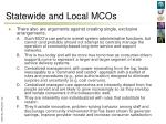 statewide and local mcos1