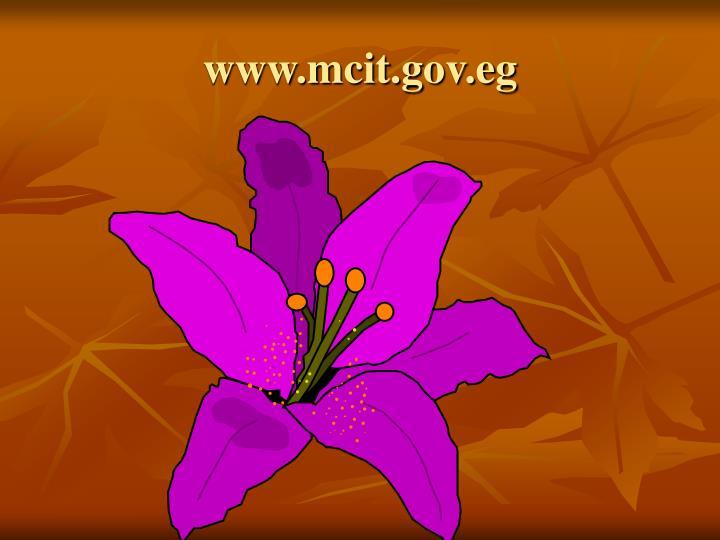 www.mcit.gov.eg
