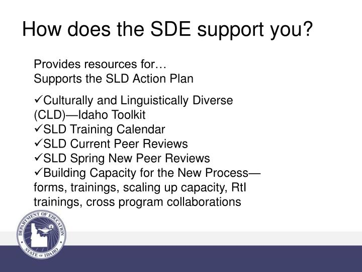 How does the SDE support you?