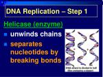 dna replication step 1