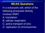 mcas questions1