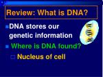 review what is dna