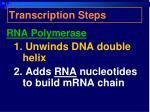 transcription steps