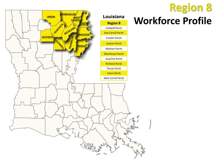 region 8 workforce profile n.