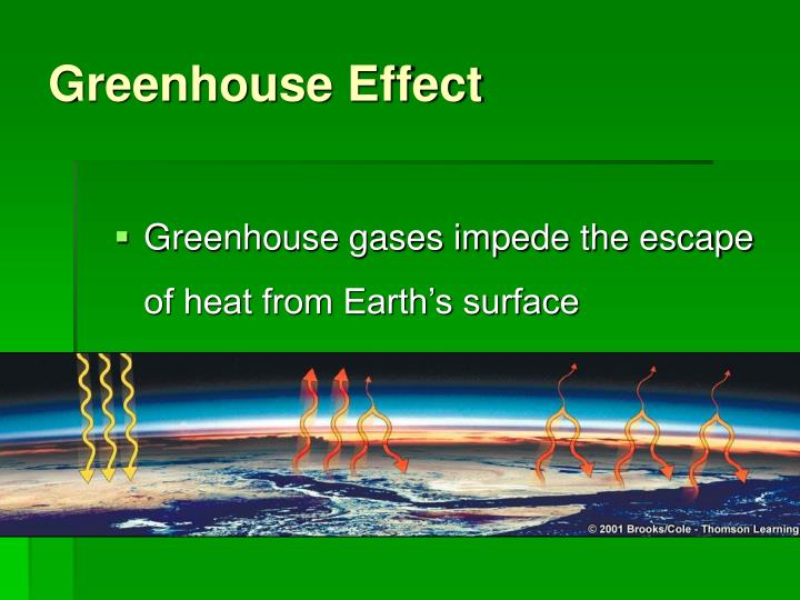 greenhouse effect and ecosystem The greenhouse effect is the rise in temperature that the earth experiences because many greenhouse gases occur naturally in the environment, such as water.