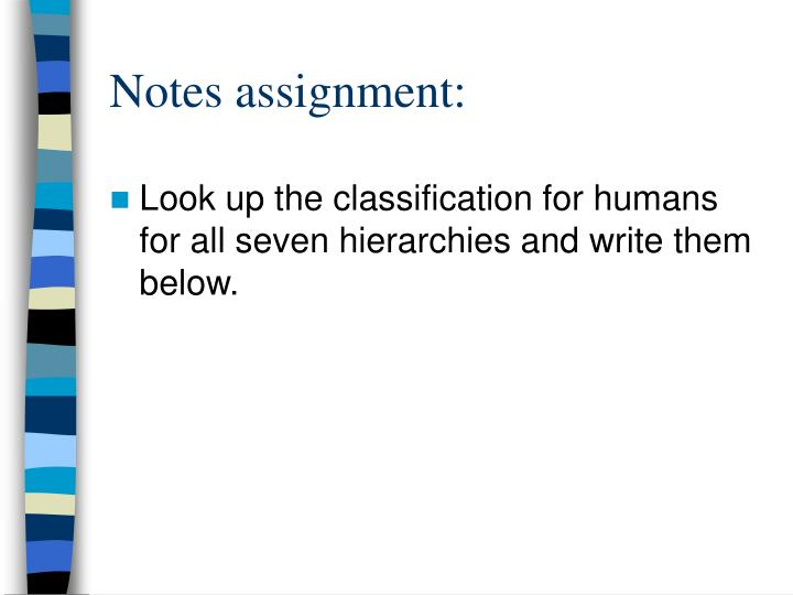 Notes assignment: