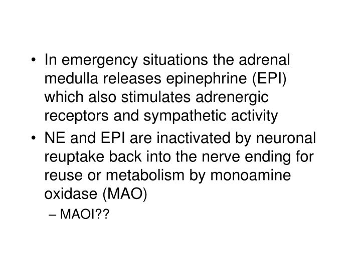 In emergency situations the adrenal medulla releases epinephrine (EPI) which also stimulates adrenergic receptors and sympathetic activity