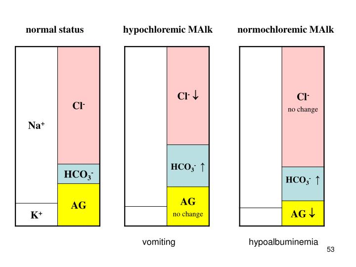 normal status                hypochloremic MAlk          normochloremic MAlk