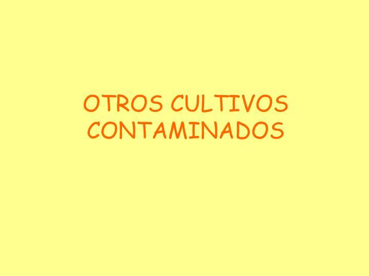 OTROS CULTIVOS CONTAMINADOS
